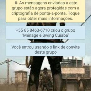 vem_whats65992366322